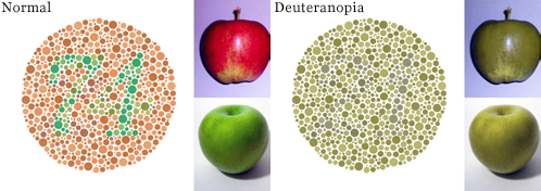 Deuteranopia Color Blindness simluated in Photoshop