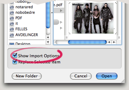Show Import Options